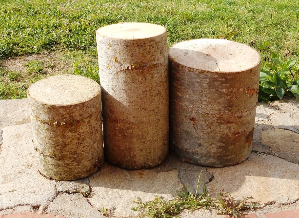 Tronco de madera con corteza 25 x 50 gla de roure shop telf 673708687 - Tronco madera decoracion ...